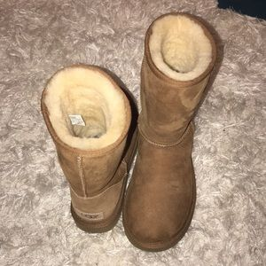UGGS BRAND NEW WITHOUT BOX!